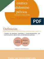 Peritoneo pélvico y estática abdomino pélvica