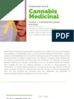 e Book Dr Mario Grieco Endometriose 1 1