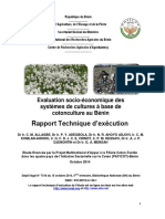rapport_technique_valuation-syst_mes-coton_culture_paficot