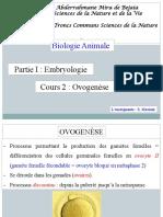 Ovogenèse