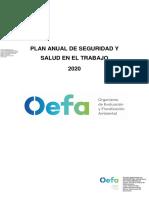 PLAN ANUAL DE SEGURIDAD Y SALUD EN EL TRABAJO 2020