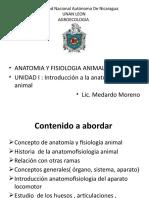 anatomia animal Unidad I