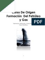 Manual Origen del Petróleo y Gas