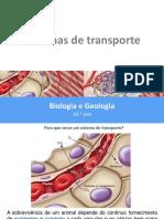 PP38 Sistemas de transporte nos animais (1)