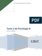 3º Teste Psicologia 12B-Vs Única