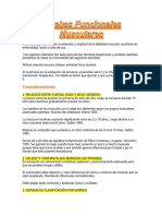 Pruebas Funcionales Musculares y EEII