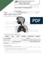 8. Sistema respiratório 1