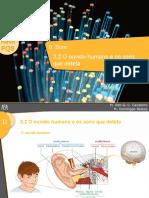 O ouvido humano e os sons que deteta
