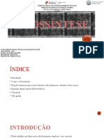 Cláudia- fotossíntese