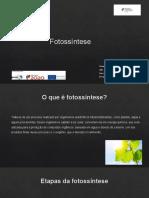 Fotossíntese (Cristiana Dias )