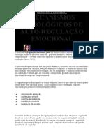Autção Emocionalo Regulação Emocional