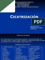 cicatrizacion-090830205939-phpapp01[1]