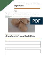 Kartoffel Tage Buch
