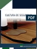 Cultura%20de%20Seguridad