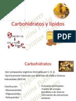 3.-Carbohidratos y lípidos