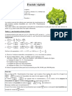 fractale_vegetale