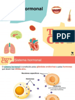 Sistema hormonal (1)