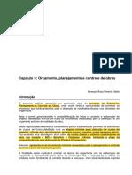 Capitulo_3_Orcamento_planejamento_e_cont