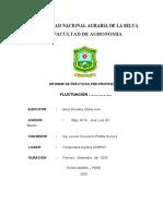 LABORES CULTURALES REALIZADAS EN LA PRODUCCION DE PLANTAS EN EL VIVERO AGROFORESTAL DE LA MUNICIPALIDAD DISTRITAL DE MAZAMARI - SATIPO