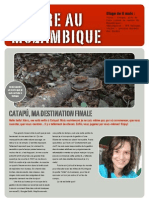 Blog Catapu 1