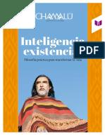 CAPÍTULO-27-inteligencia-existencial