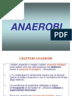 3. Batteri anaerobi