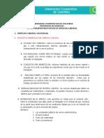 PREPARATORIO DE LABORAL