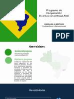 Programa de Brasil FAO