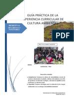 GUÍA PRÁCTICA 06
