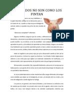 Los cerdos no son como los pintan