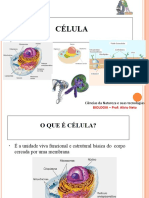 Aula-Membrana plasma