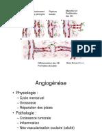 Angiogénèse