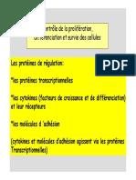 Contrôle De La Prolifération, Différenciation Et Survie Des Cellules