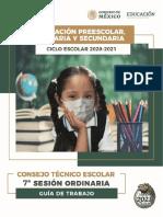 Guía Séptima Sesión CTE PPS FINAL