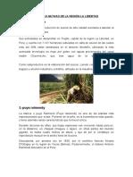 237691082-Plantas-Nativas-de-La-Region-La-Libertad