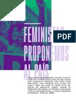 Feministas proponemos al país_compressed