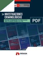 01. Investigaciones Criminologicas MINJUSDH