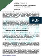 Unidad I-Los Derechos Humanos y el Sistema Interamericano de Proteccion