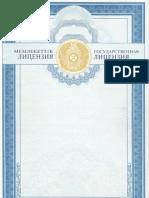 KIMEP's License