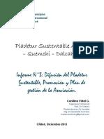Informe Final Intercomunal de Chiloé