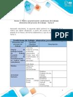 Matriz Caracterización Condiciones de Trabajo y Elementos Del Proceso de Trabajo - Tarea 3 (1)