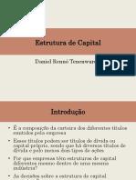 Estrutura de Capital (Daniel Tenenwurcel)