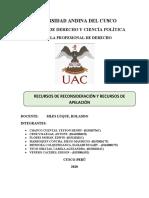 1RECURSO DE RECONSIDERACION Y APELACION MODIFICADO PRACTICAS-PRE-PROFESIONALES