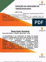 4.2+REGULAMENTO+DA+PROFISS%C3%83O+DE+FONOAUDIOLOGIA