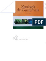 Zoologia_de_Guatemala