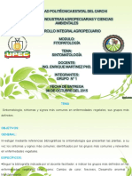exposicinsintomatologiadelasplantastrabajoautnomo-151028162832-lva1-app6891