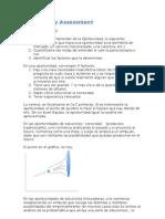 20110315 - Opportunity Assessment