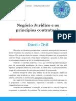 Negócio Jurídico e Os Princípios Contratuais