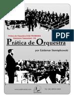 Prática de Orquestra IEAD PROMESSA (Alm.Tam.)