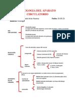 FISIOLOGIA DEL APARATO CIRCULATORIO